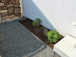 Kräutergarten erneuert