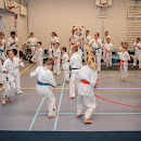 KarateGoes_0058.jpg