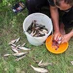 20160624_Fishing_Bakota_174.jpg
