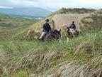 Sanddune Riding.jpg