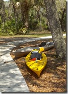Andy's kayak and a rental