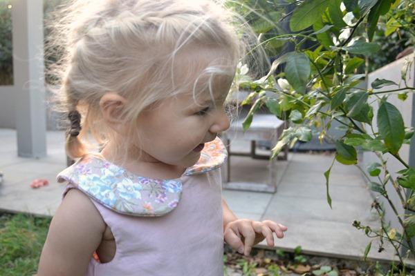 Clementine Dress Pretty Pipi