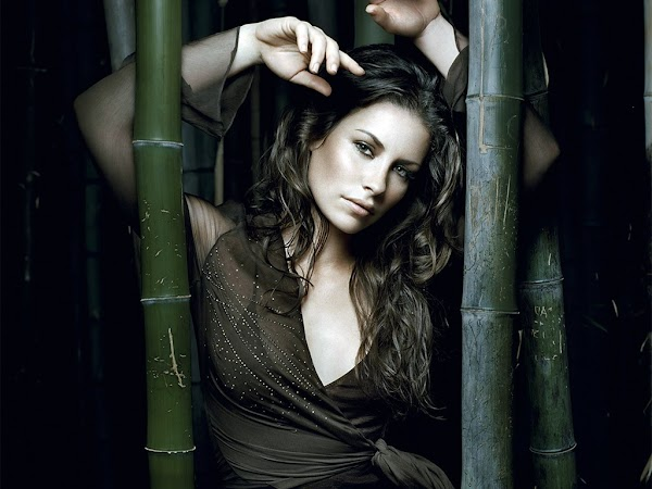 Evangeline Lilly in black dress(2pics):wallpaper,dress for girls,fun girls