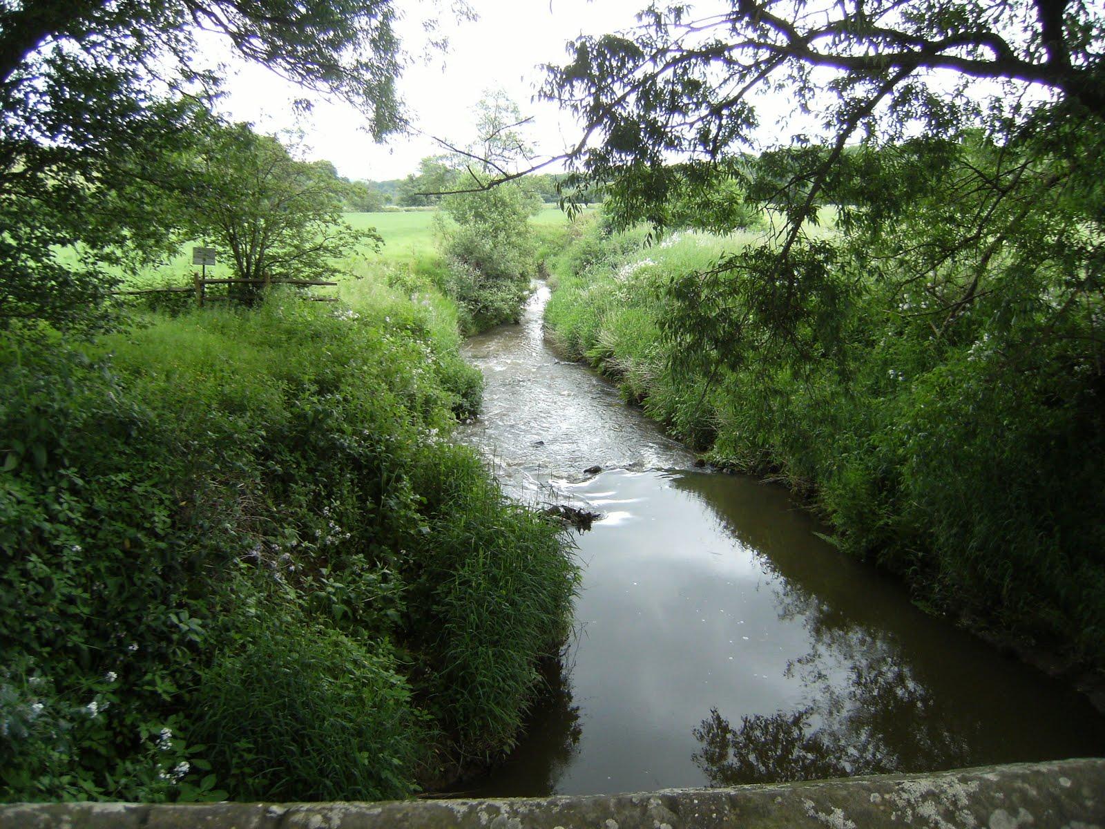 1006120011 River Medway at Balls Green