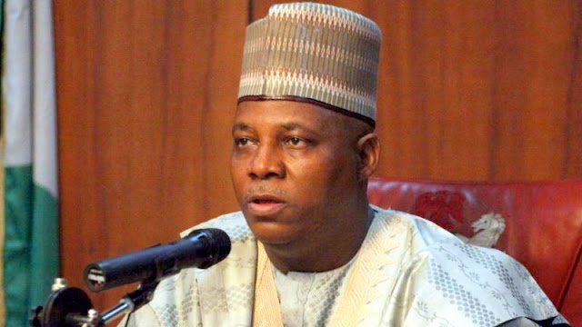 Shettima directs placement for Borno indigenes as 80 percent pass WAEC, NECO
