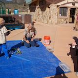 2014 Dino Beach Party 5k/10k - DSC_0062.JPG