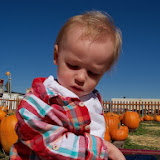 Pumpkin Patch - 115_8263.JPG