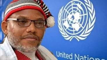 Biafra: Details of Nnamdi Kanu meeting with UN emerge