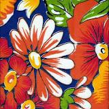 Reps Chita cont.2008 004.jpg