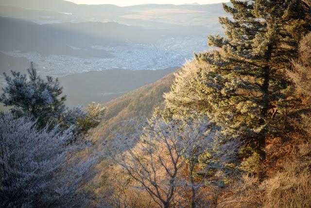 三つ峠 霧氷