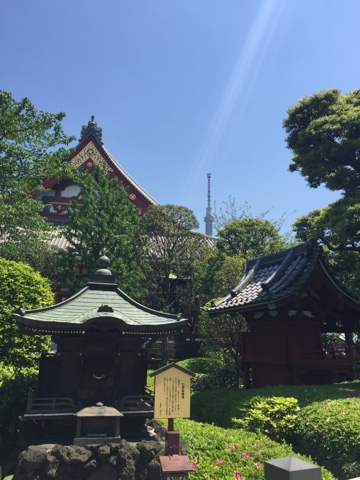 The grounds surrounding Sensoji Temple in Asakusa include a gorgeous Japanese Garden with Koi Carp pond and little shrines