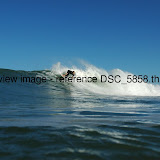 DSC_5858.thumb.jpg