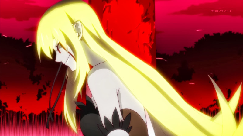 Monogatari Series: Second Season - 10 - monogatarisss_10_074.jpg