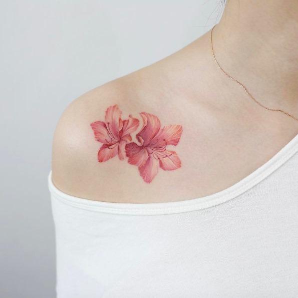 estas_magnficas_flores_cor-de-rosa