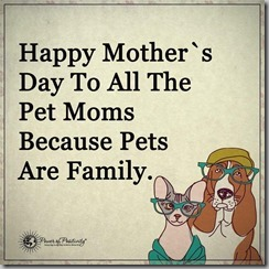 happy mothers day-pet moms 2