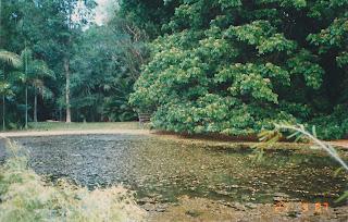 9780Darwin Botanic Gardens