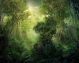 Fantasy Of Mystical Territory
