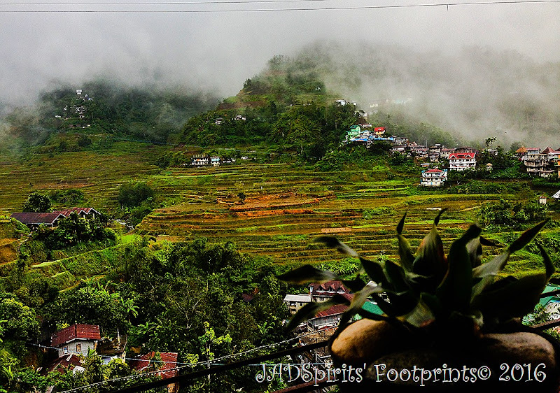 The rice terraces as seen from the balcony of Banaue Homestay