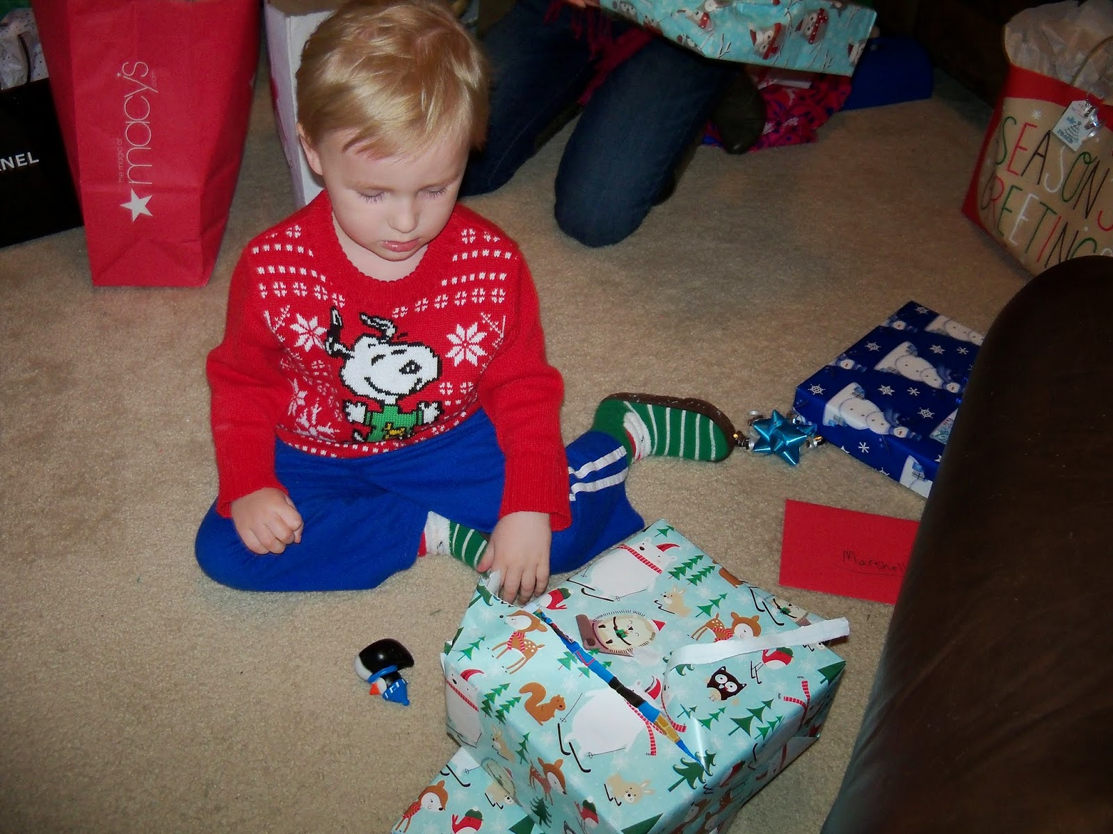 Christmas 2014 - 116_6573.JPG