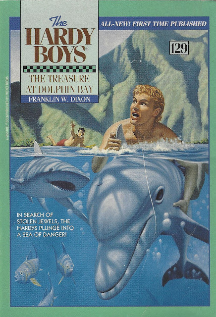 The Treasure at Dolphin Bay cover