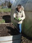 Comment cultiver des pommes de terre en silo