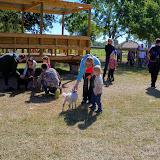 Blessington Farms - 116_5033.JPG