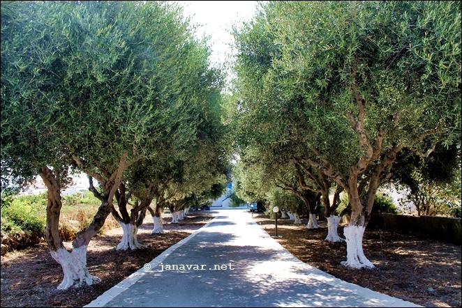 Reisetipp: Ipokampos-Apartments auf Kos, Griechenland