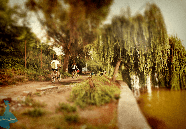 parc iulius mall lac gheorgheni