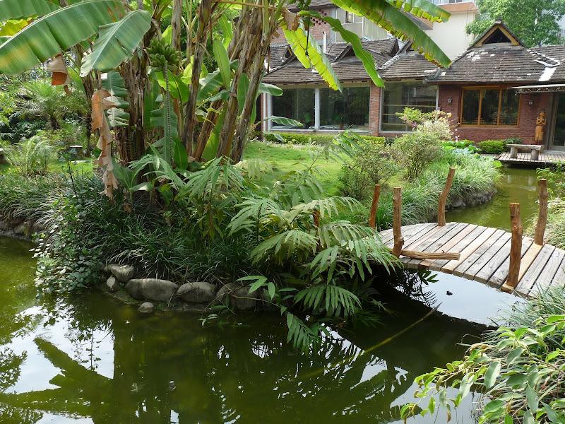 Chine .Yunnan . Lac au sud de Kunming ,Jinghong xishangbanna,+ grand jardin botanique, de Chine +j - Picture1%2B533.jpg