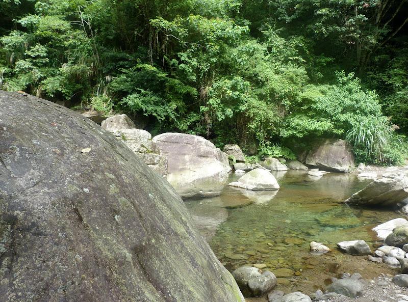 Petite randonnée au sud de Taufen, dans la région de Miaoli - P1330595.JPG
