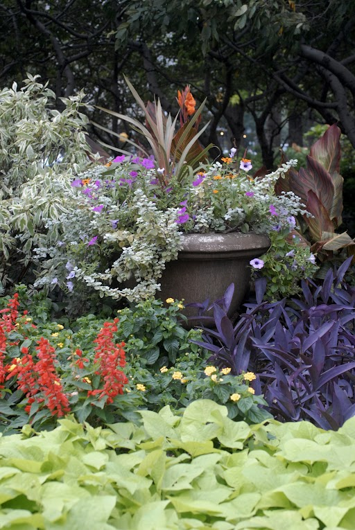 Foliage and annuals make a lush summer display.