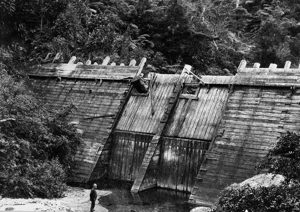 kauri-driving-dam-4