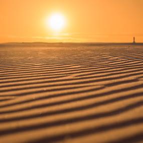 Deserted beach by Anita Meis - Landscapes Beaches ( coast, terschelling, beach, sunset, netherlands, desert, sun, water, sea )