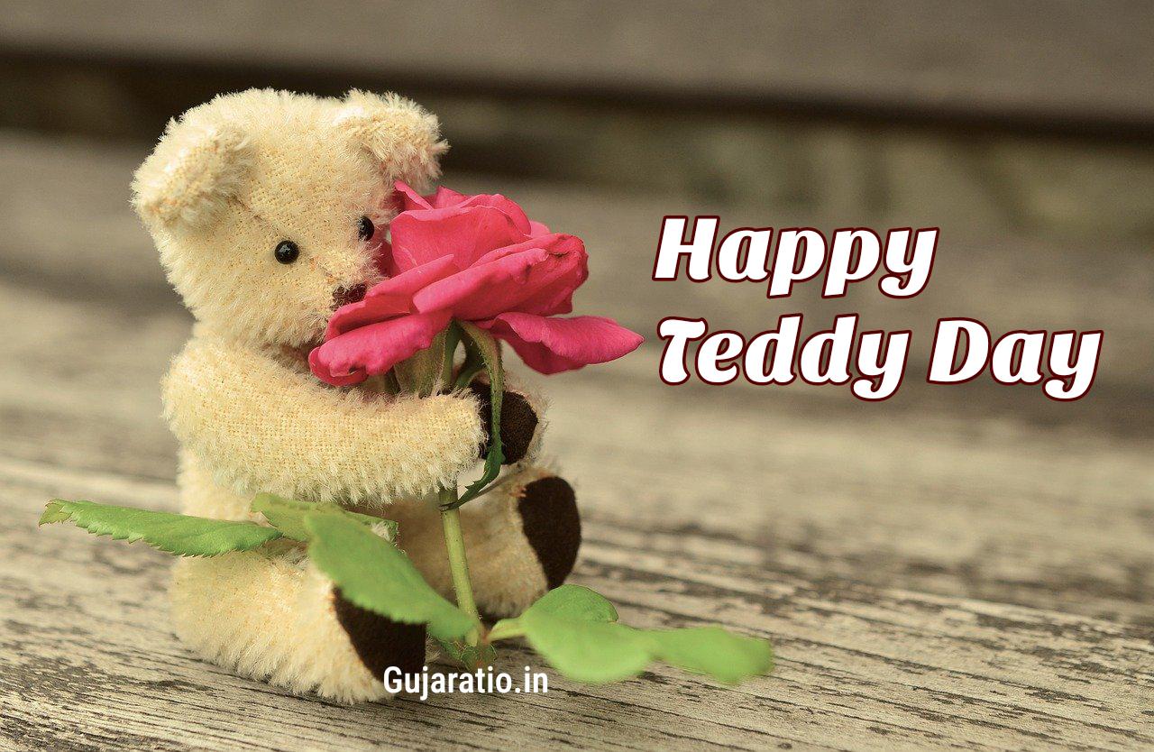 Gujarati-Teddy-Day-status-image