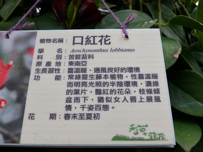 Taipei, Yilan, Datong, Luoding - P1030047.JPG
