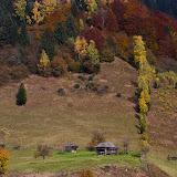 Toamna pe Valea Dâmboviţei