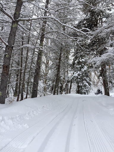 Fresh track on Bootleg extension. Winter fairyland.