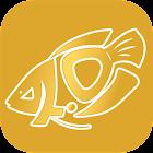 Inno Fish