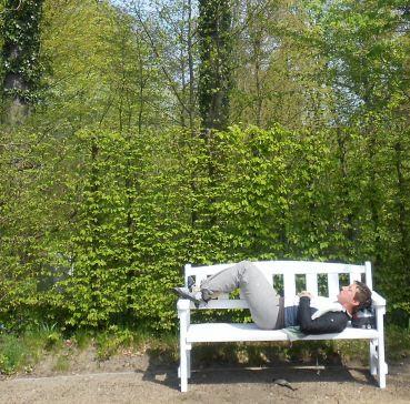 Miri pausiert im Schlossgarten von Hovestadt, Lippetal