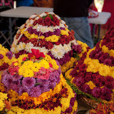 TeNABostonBathukamma2015Celebrations