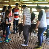 Educational Trip to Goat Farm, Padawan 26022016