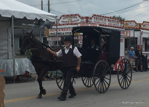 Amish in the parade - this was a first!