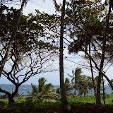 Hawaii Day 5 - 100_7443.JPG