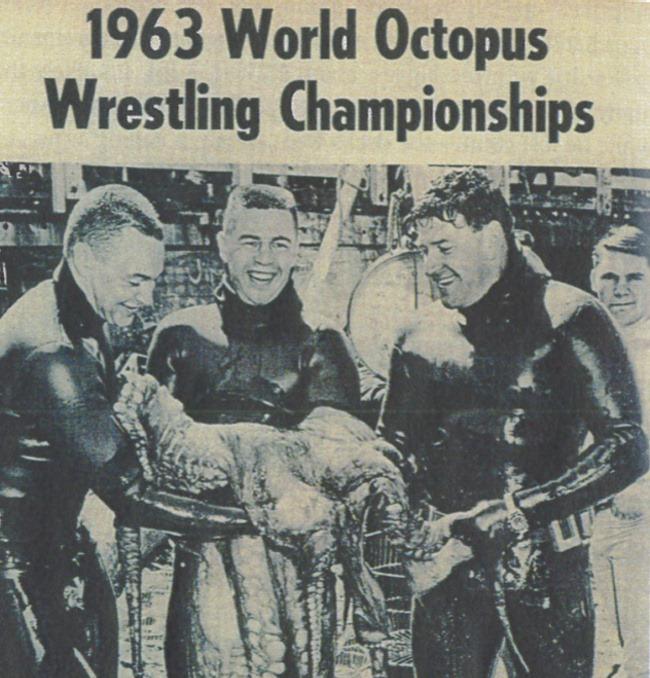 octopus-wrestling-3