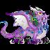 Dragón Pulpo   Octopus Dragon
