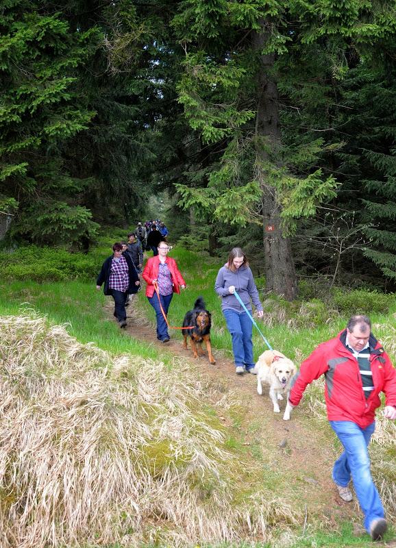 2014-04-13 - Waldführung am kleinen Waldstein (von Uwe Look) - DSC_0434.JPG