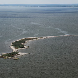 Cat Island Sept 27, 2013 109 (1)