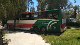 Plano cercano del autobús empotrado en la zona ajardinada de Los Pinos