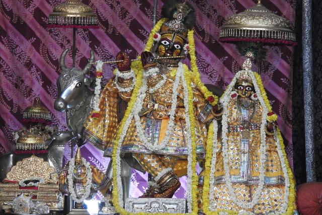 Radha Govinda Devji Deity Darshan 23 April 2016 (6)