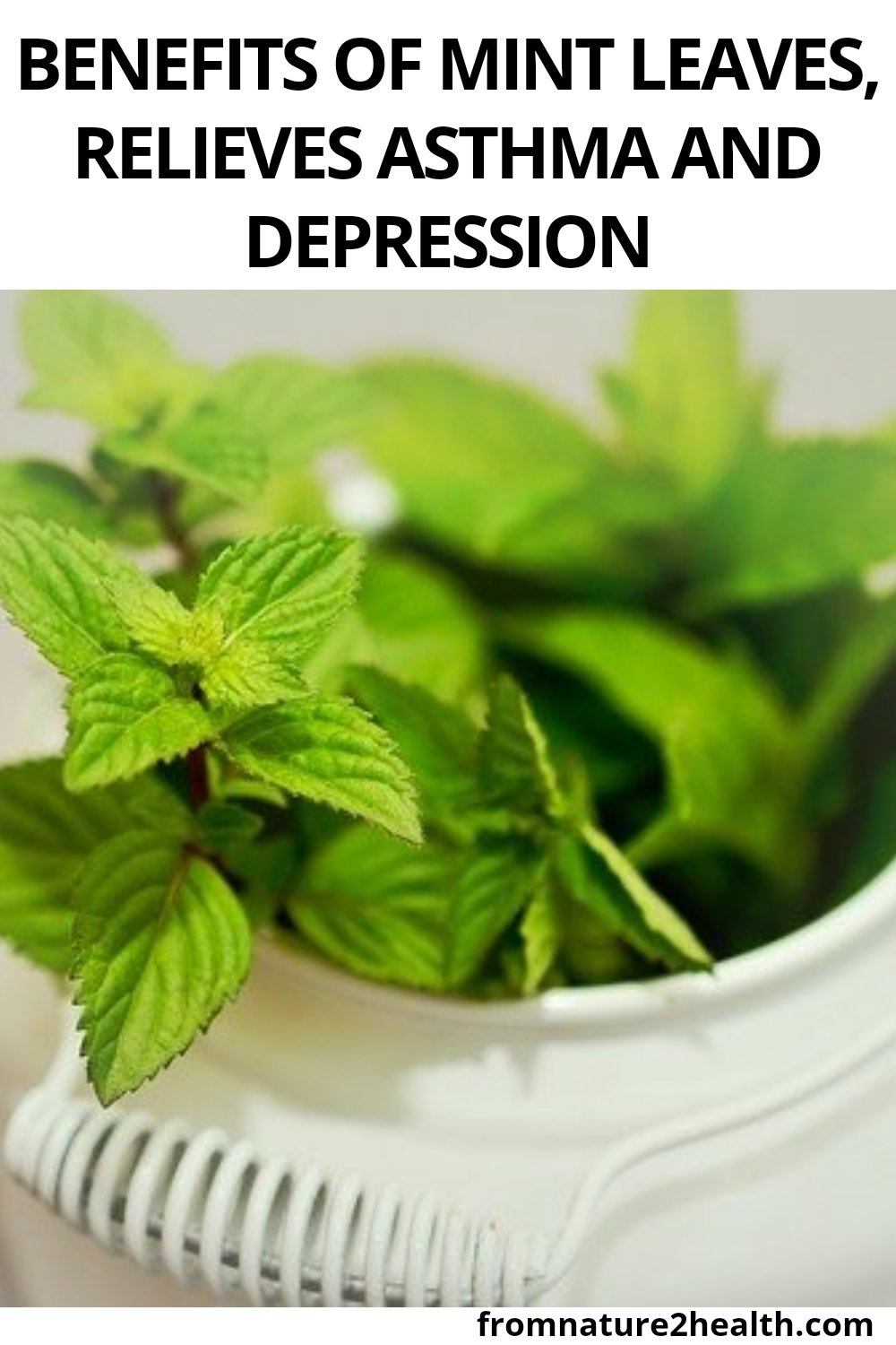 Benefits of Mint Leaves, Relieves Asthma and Depression